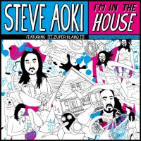 Cover Steve Aoki feat. [[[Zuper Blahq]]] - I'm In The House